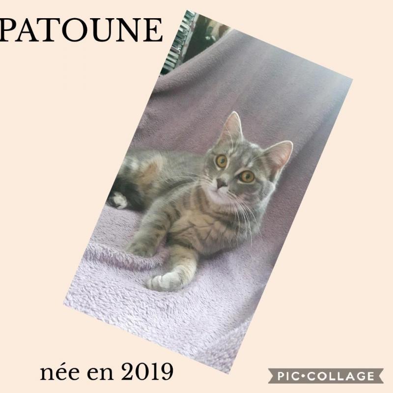 PATOUNE