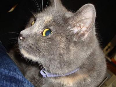 Effy 7 ans